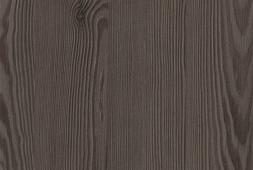 TM anthracite mountain larch